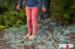 Racine/MANYMONTHS 2020-21 - Leggings unisex pour enfants en pure laine mérinos