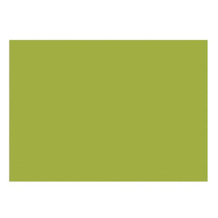Racine  «VERT TENDRE » - THERALINE CONFORT Coussin d'allaitement